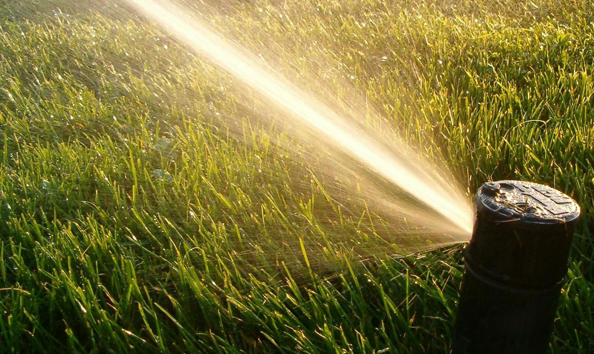 Why You Need Commercial Lawn Care