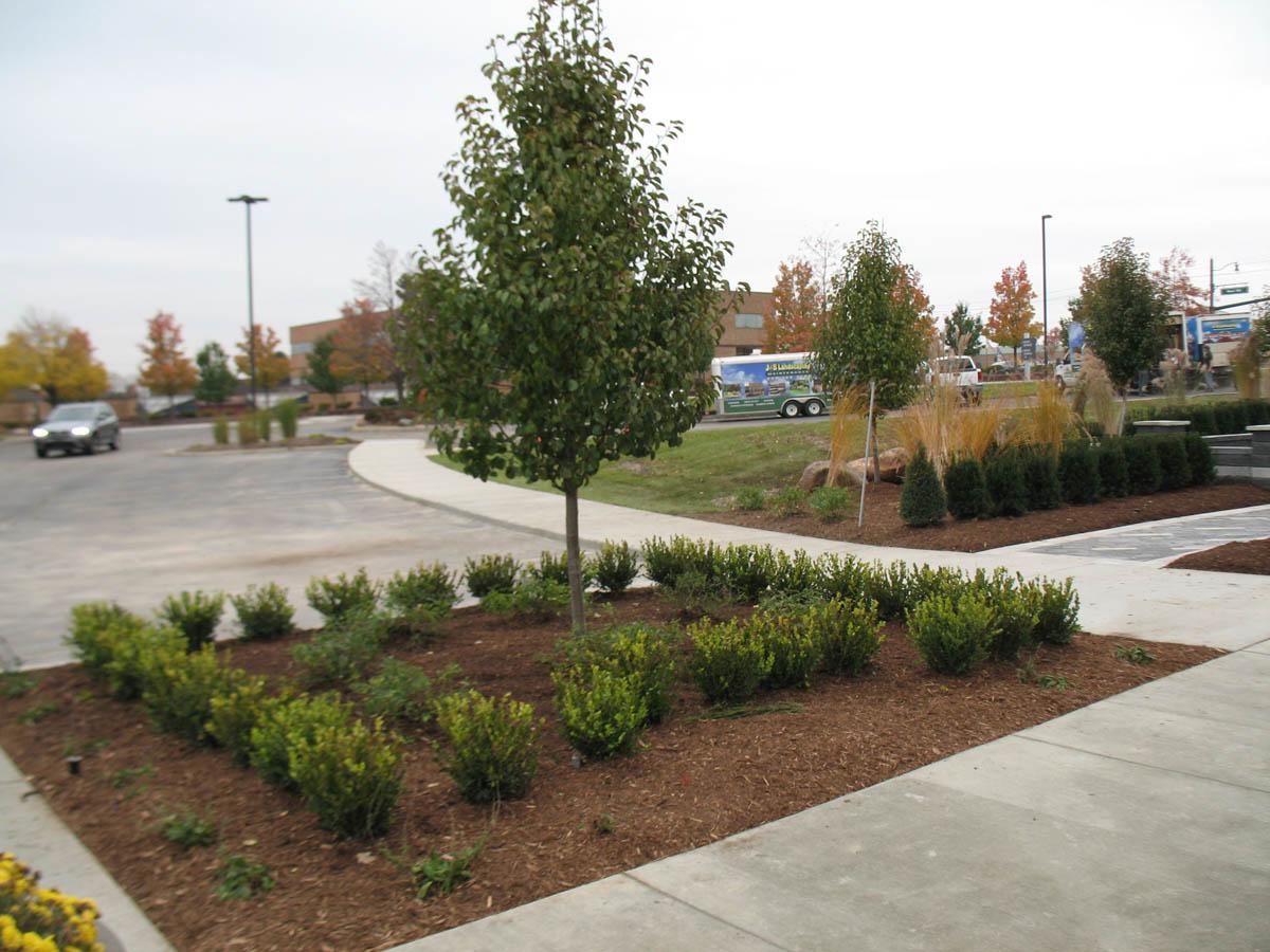 Five Benefits of Having a Commercial Landscape Design
