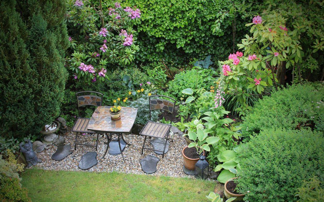 Create Your Backyard Sanctuary
